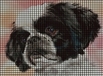 Shih Tzu Face Crochet Pattern